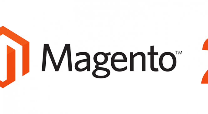 Want to create Magento Website?
